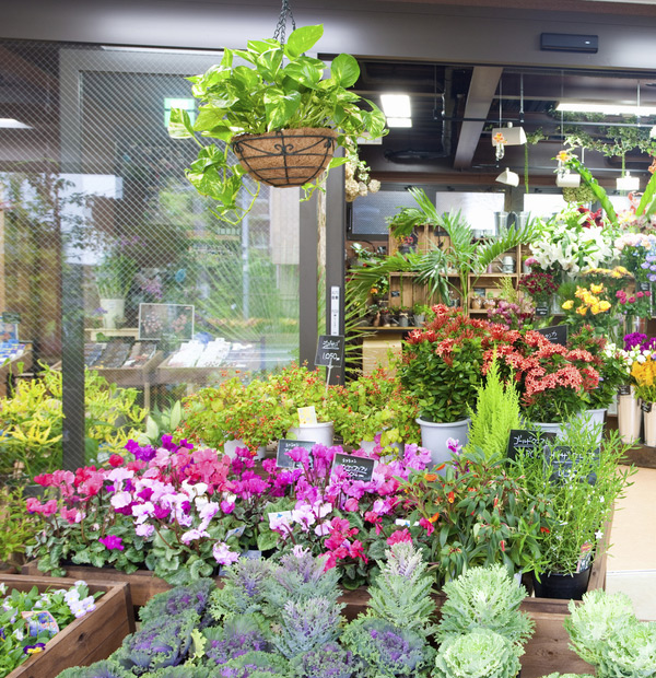 Gps Vehicle Tracking For Florist Companies Gps Tracking